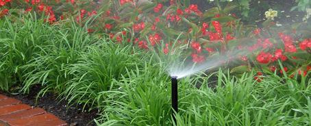 sprinkler-system-toronto