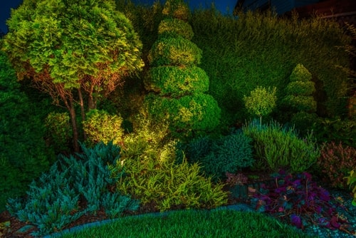 Landscape Lighting Ideas for Curb Appeal