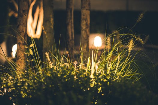 Avoid Landscape Lighting Mistakes