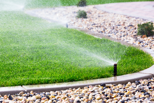 Proper Watering for Grass and Garden3