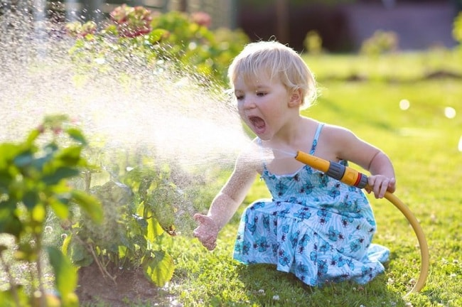 Five Fallacies about Watering