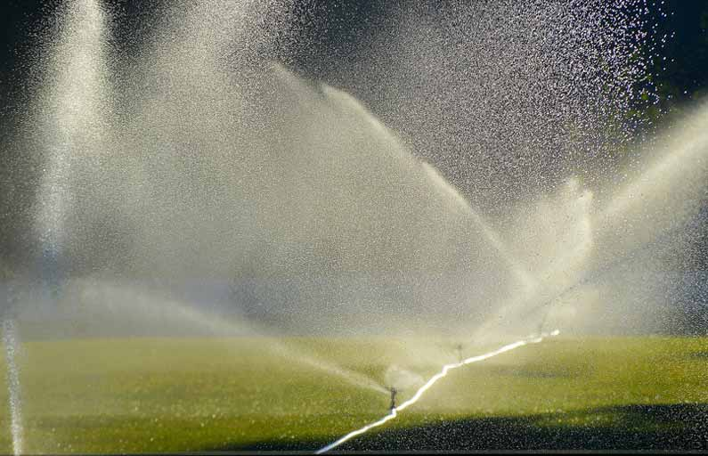 How to Save When Watering Your Lawn