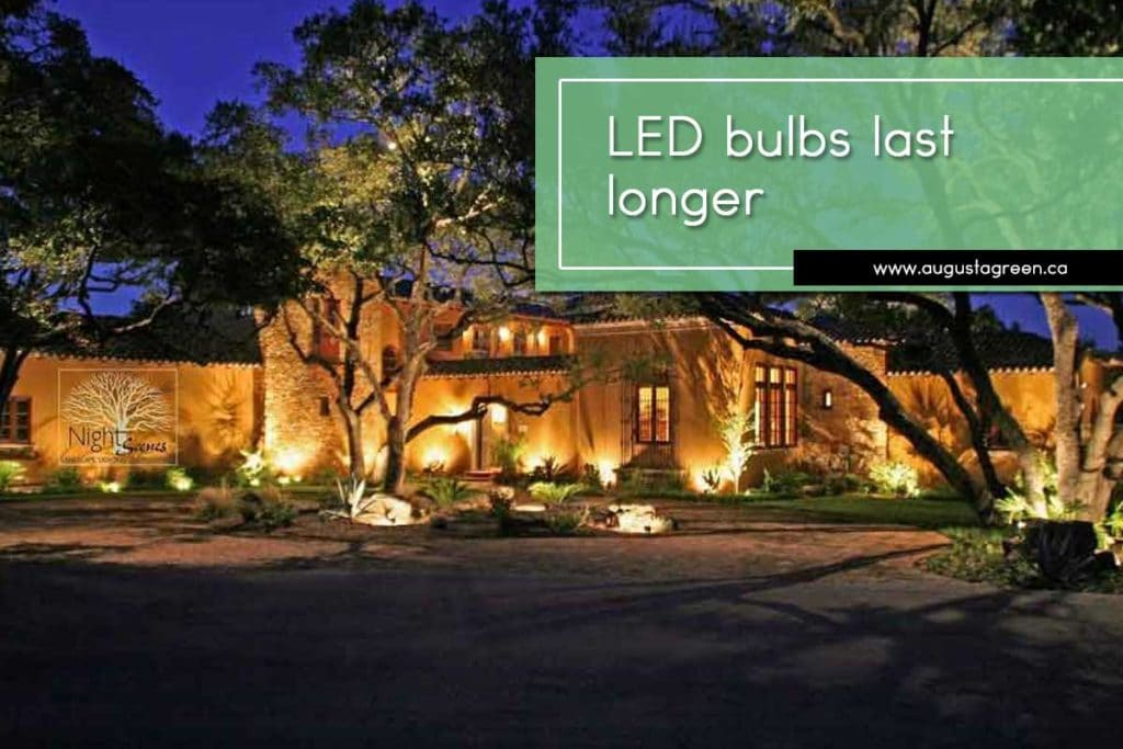 LED bulbs last longer.