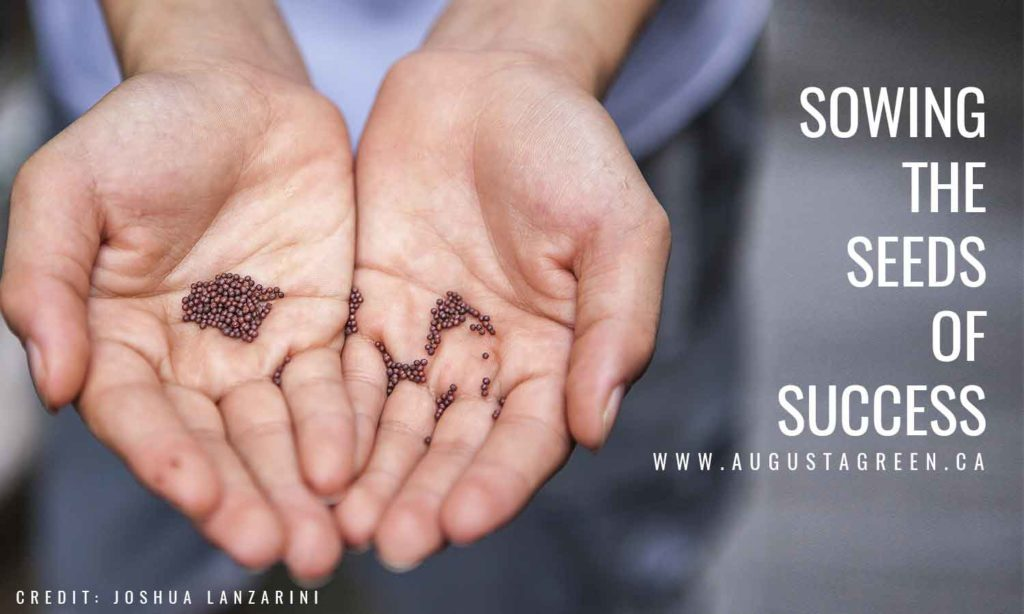 Sowing the seeds of success