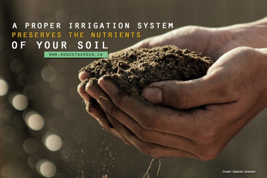 propper irrigation