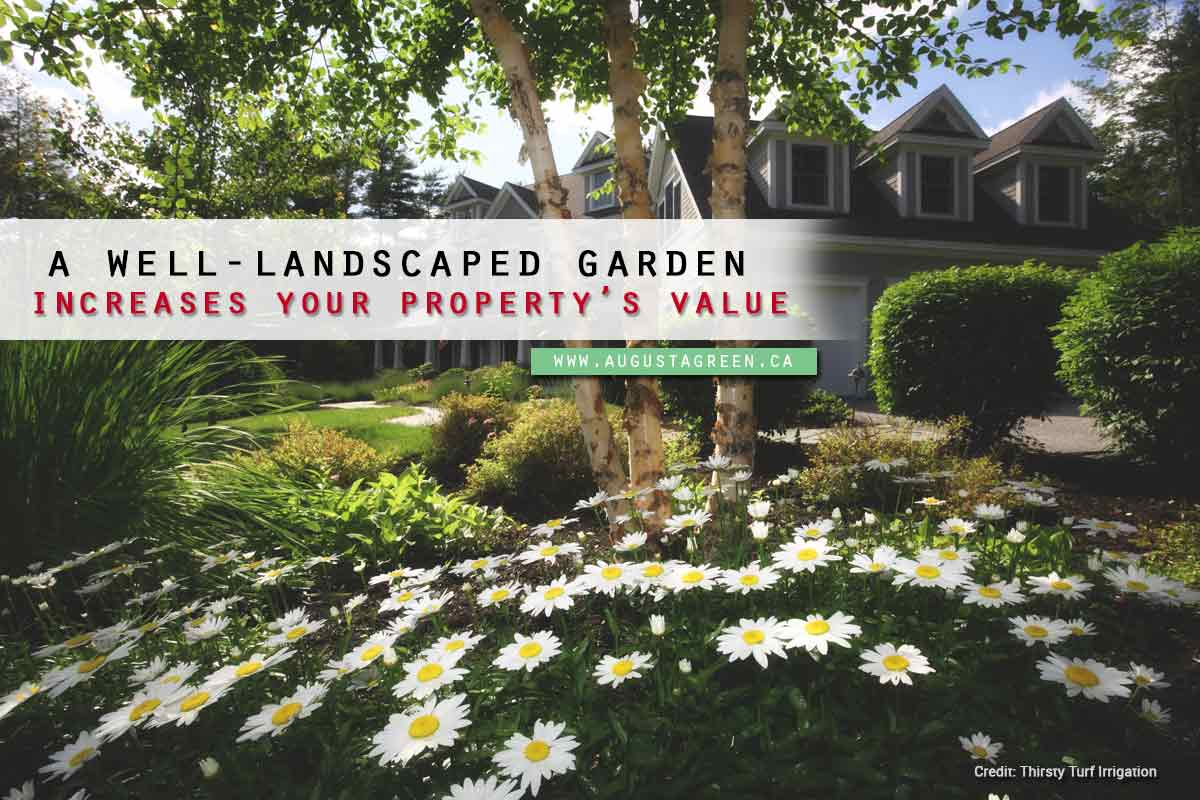 well landscaped