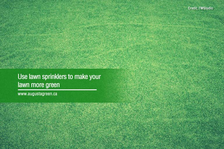 How to Choose and Use the Right Lawn Sprinklers