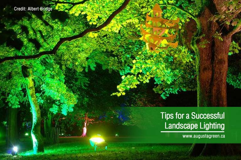 Tips For Successful Landscape Lighting