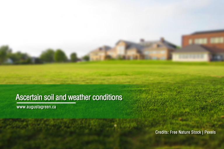 ascertain soil