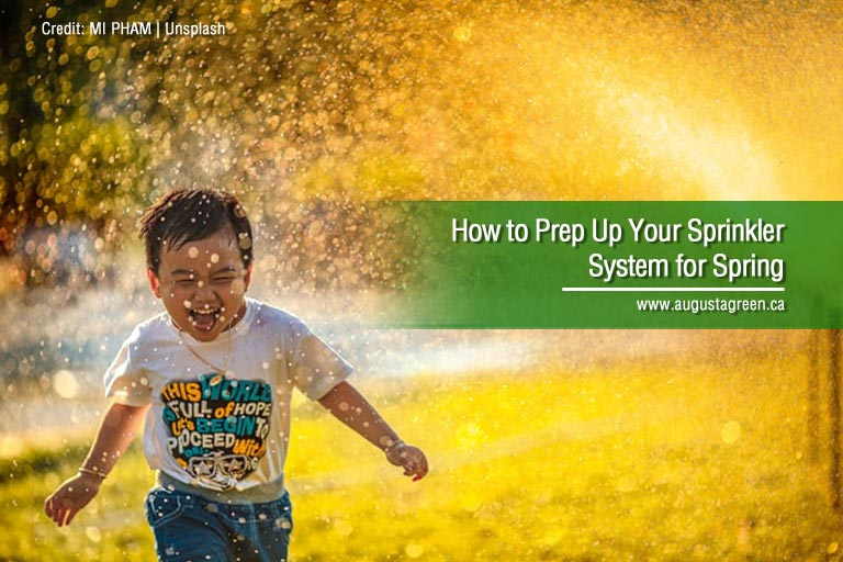 How to Prep Up Your Sprinkler System for Spring