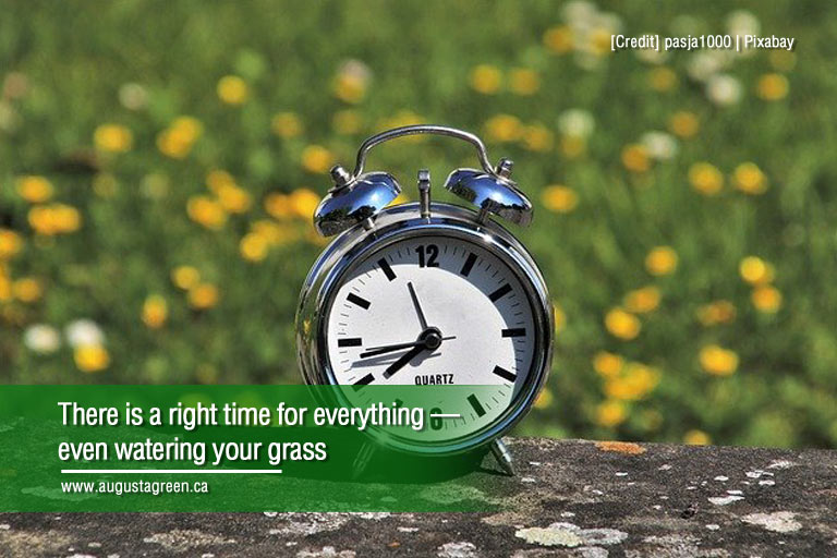 there is a right time for everything