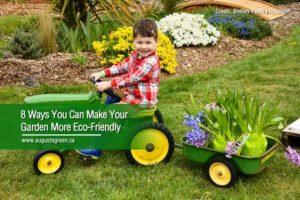 make your garden eco friendly