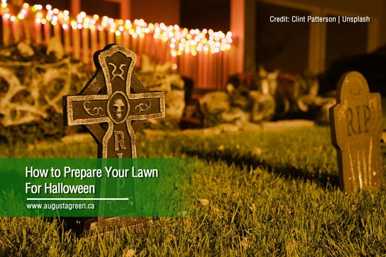 How to Prepare Your Lawn For Halloween