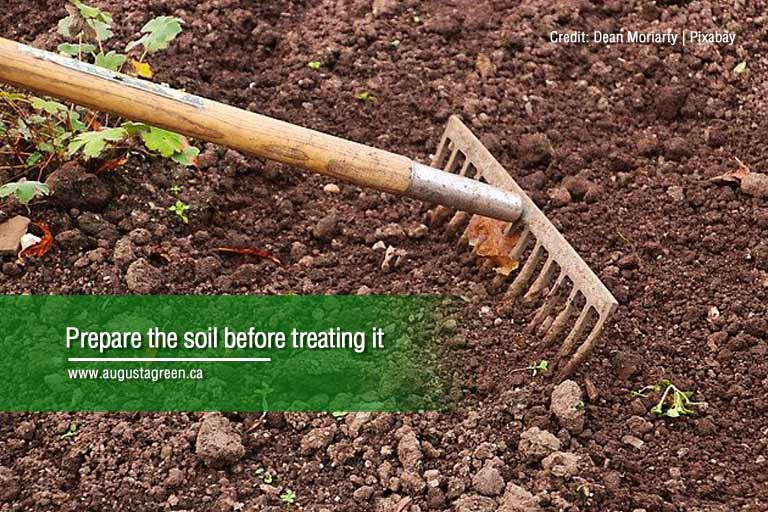 prepare the soil before taking it