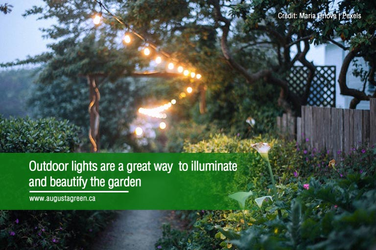 Outdoor lights are a great way to illuminate and beautify the garden