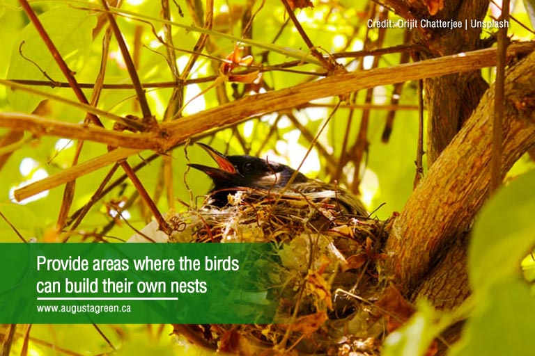 Provide areas where the birds can build their own nests