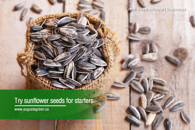 Try sunflower seeds for starters