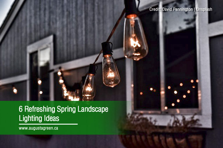 6 Refreshing Spring Landscape Lighting Ideas