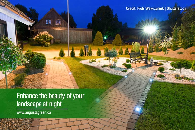 Enhance the beauty of your landscape at night