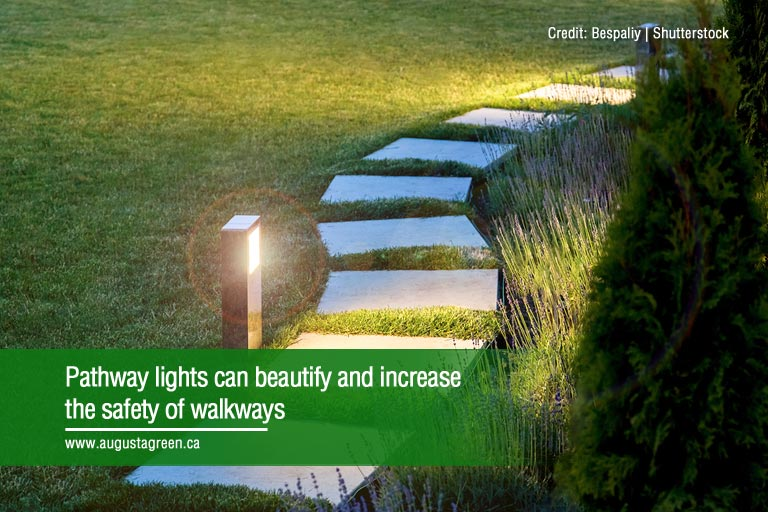 Pathway lights can beautify and increase the safety of walkways