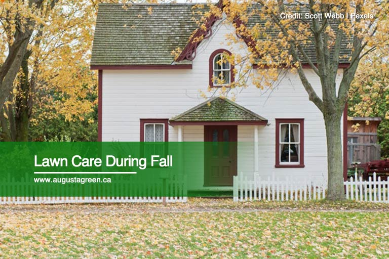 Lawn Care During Fall